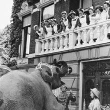 Circus Jos Mullens komt even langs, Groningen, 1951 Moet cryptisch toch? Foto Fotobedrijf Piet Boonstra, Groninger Archieven